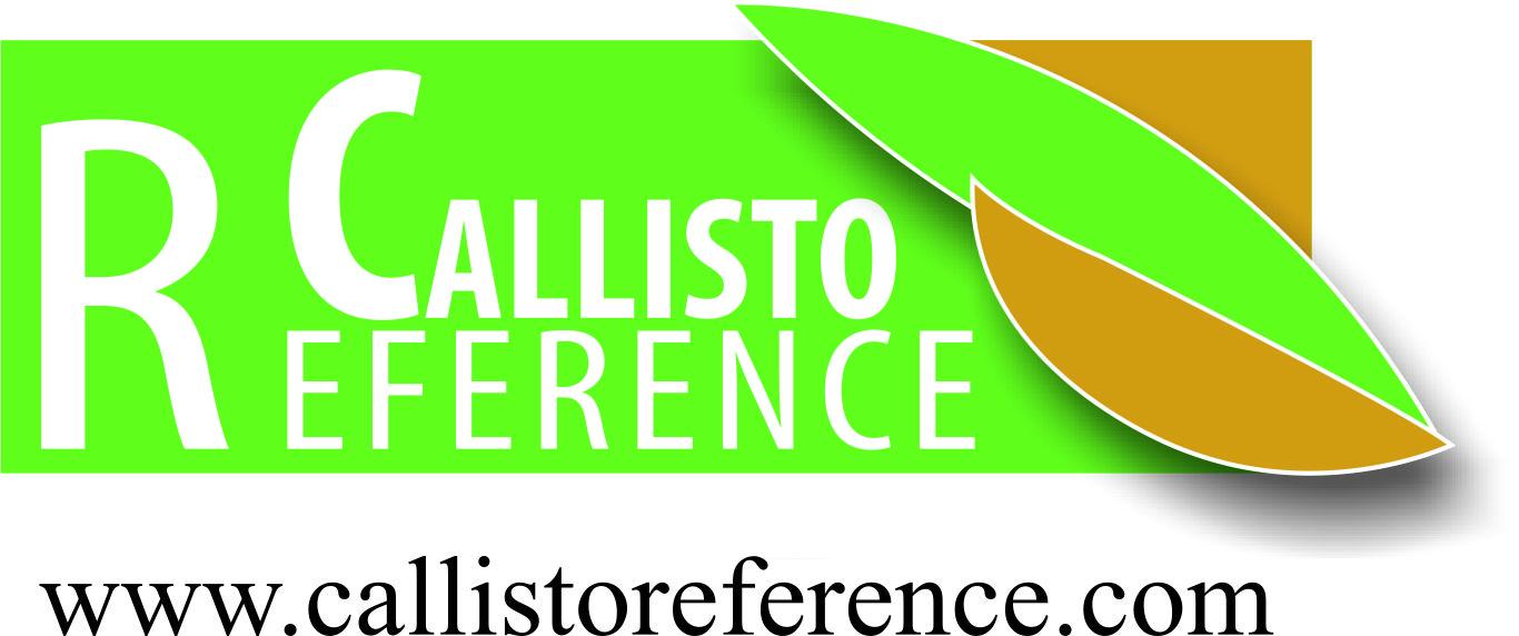 Callisto Reference